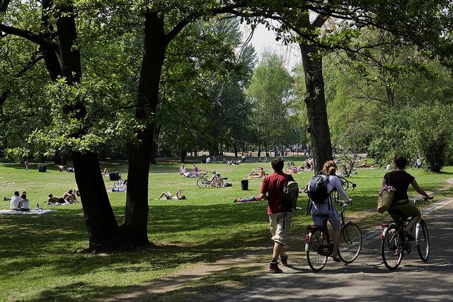 Bicicletas no parque